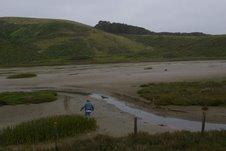 mudflats.jpeg