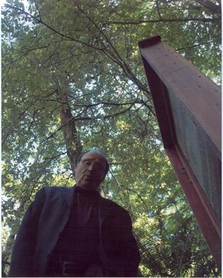 redwoods200.jpg