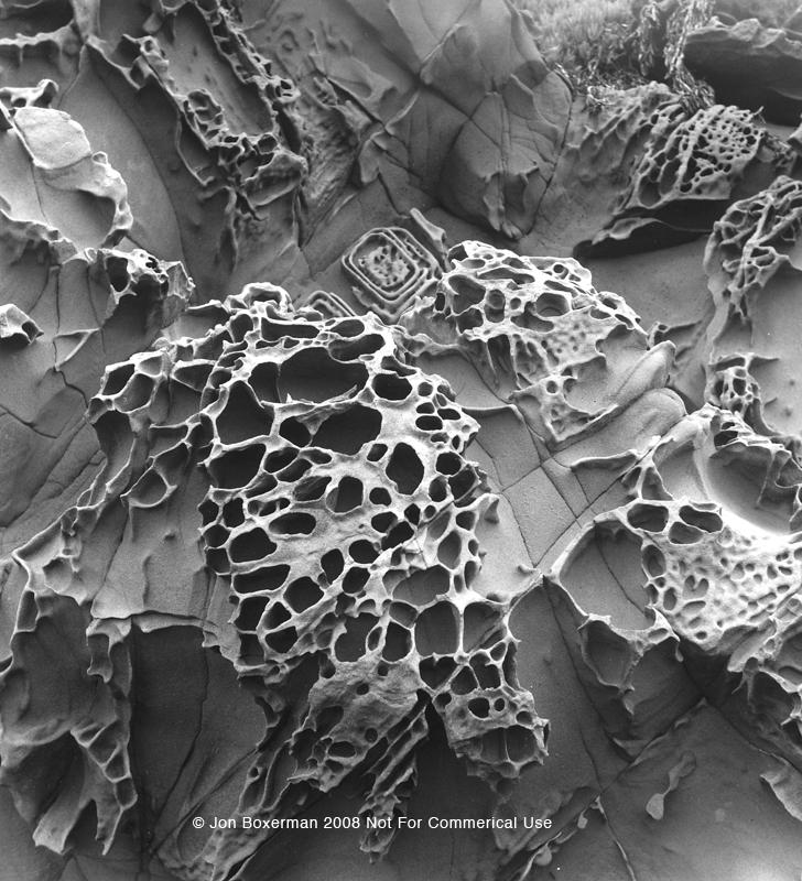 der wissenschaftler geologe tafoni
